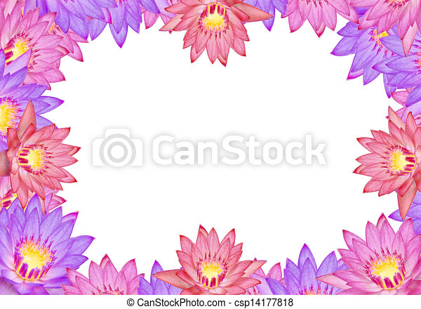 Colorful lotus flowers with text area clipart search illustration colorful lotus flowers csp14177818 mightylinksfo Images