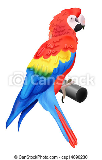 colorful parrot macaw isolated on white background vector rh canstockphoto com macaw clipart scarlet macaw clipart
