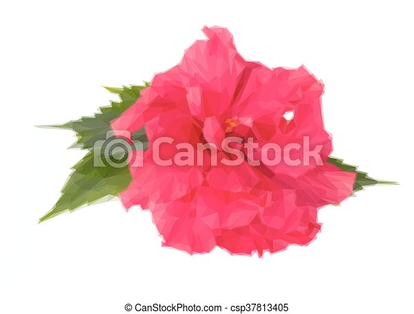 Colorful Pink Hibiscus Flower Low Poly Illustration Pink Fresh
