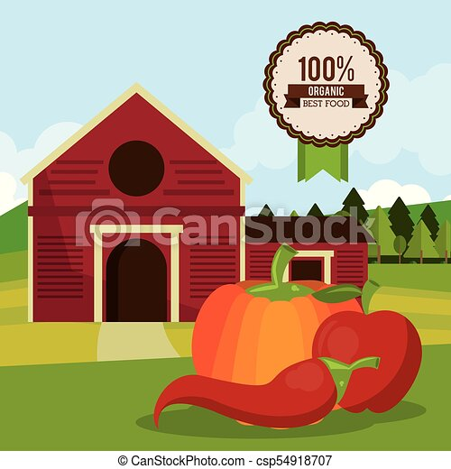 colorful poster of organic best food with farm landscape with chilli and pumpkin and apple - csp54918707