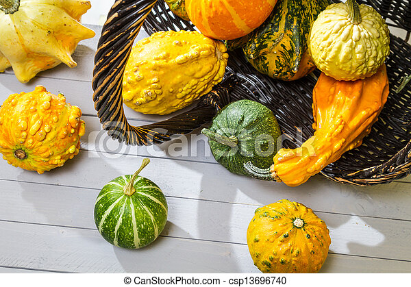Colorful pumpkins harvested in a wicker basket - csp13696740
