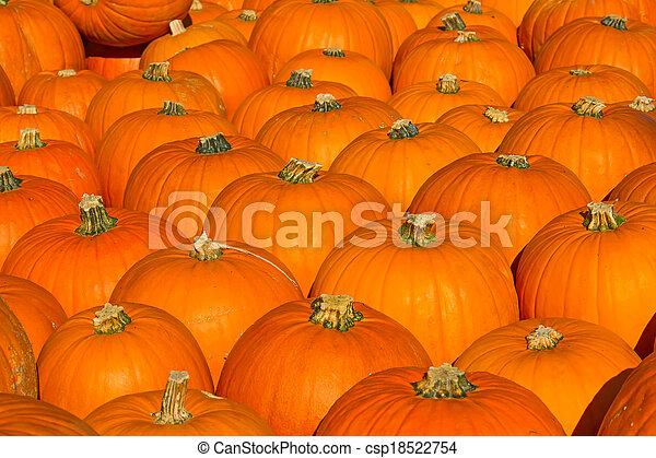 Colorful pumpkins - csp18522754