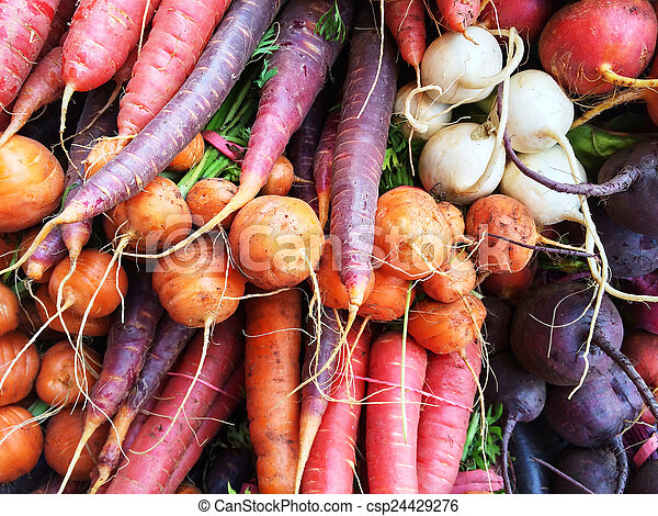 Colorful root vegetables - csp24429276
