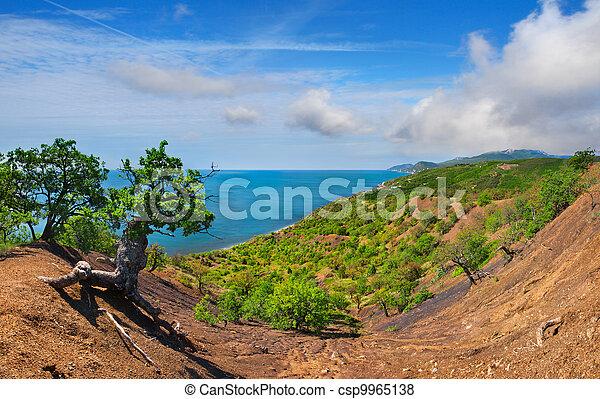 Colorful summer landscape in Crimea - csp9965138