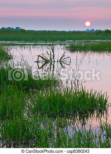 colorful sunset over marshland - csp8380243