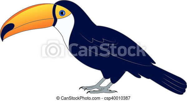 Colorful toucan bird on the ground - csp40010387