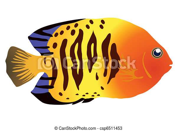 tropical fish stock illustrations 20 548 tropical fish clip art rh canstockphoto com cute tropical fish clipart Cute Fish Clip Art