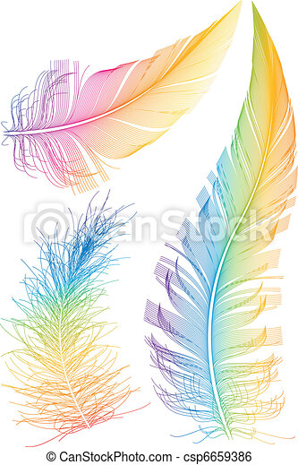 colorful vector feather - csp6659386
