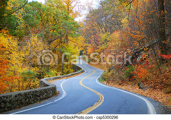 colorful winding Autumn road  - csp5300296