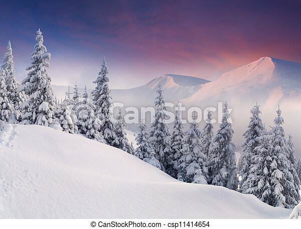 Colorful winter landscape in the mountains. Sunrise - csp11414654