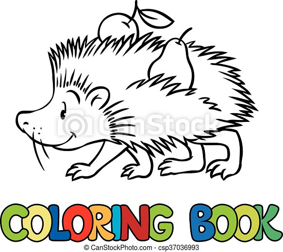 - Coloring Book Of Little Funny Hedgehog. Coloring Book Or Coloring Picture  Of Funny Hedgehog With Apple And Pear On His
