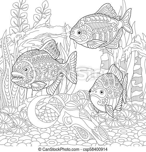 coloritura, fishes., piranhas, pagina - csp58400914
