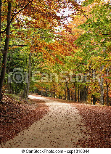 colors of fall - csp1818344