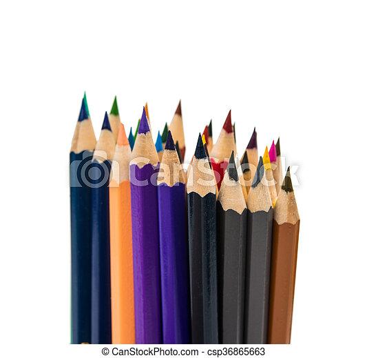 Colour pencils isolated - csp36865663