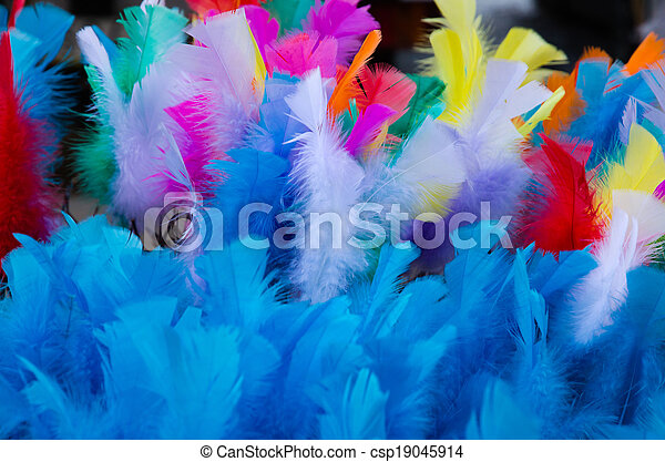 Coloured easter feathers - csp19045914