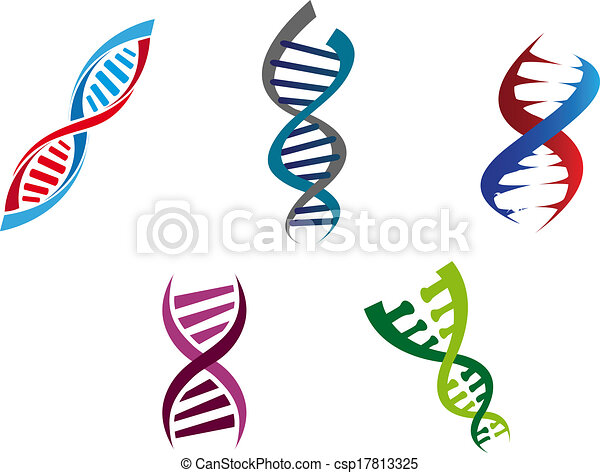 Colourful DNA strands - csp17813325
