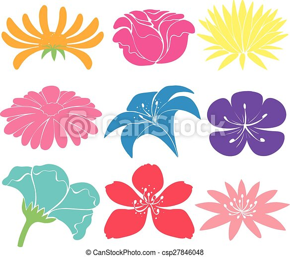 Colourful Floral Designs Set Of Colourful Floral Designs On A White