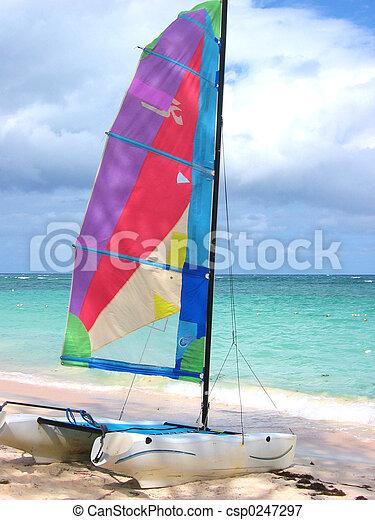 Colourful Windsurf - csp0247297