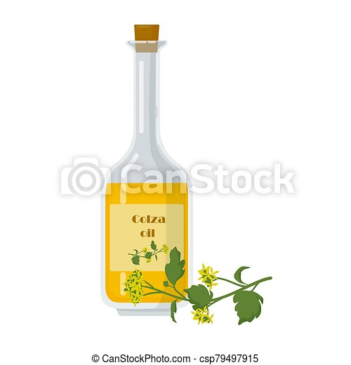 Colza oil in bottle and oilseed rape flowers. - csp79497915