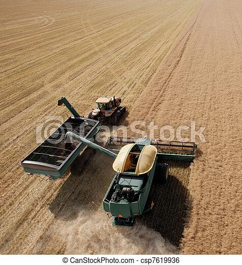 Combine and Grain Cart - csp7619936