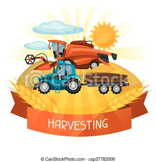 Combine harvester and tractor on wheat field. Agricultural illustration farm rural landscape - csp37782008