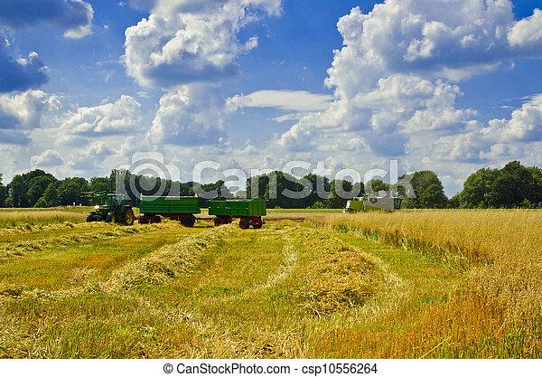 Combine harvester - csp10556264