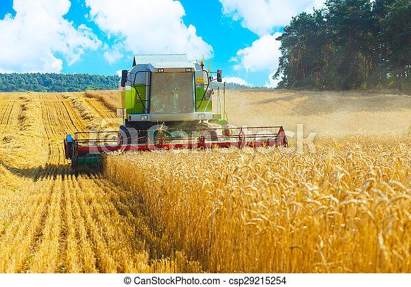 combine harvester - csp29215254