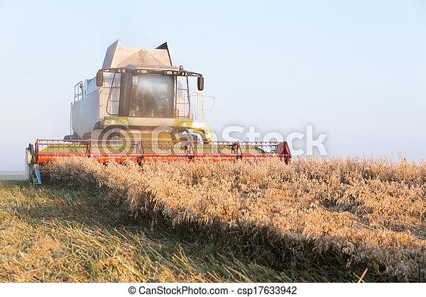 combine harvester - csp17633942