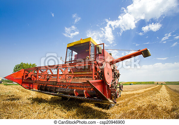 Combine harvester - csp20946900