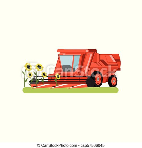 Combine harvester working in field gathering sunflowers, agricultural machinery vector isolated on a white background - csp57506045