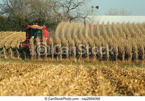 combine harvesting corn - csp2694066