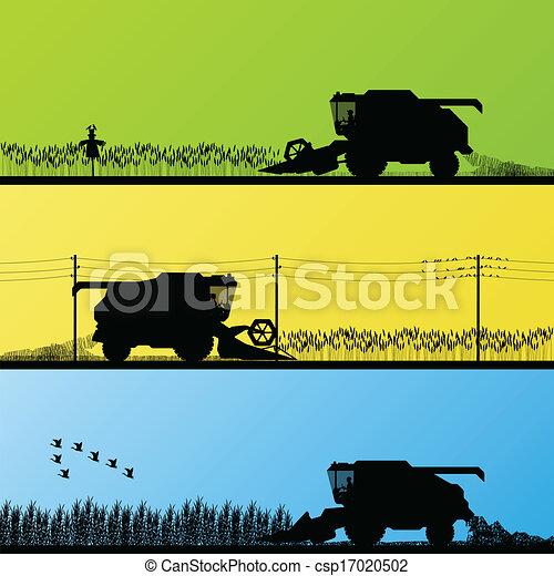 Combine harvesting crop in grain fields vector - csp17020502