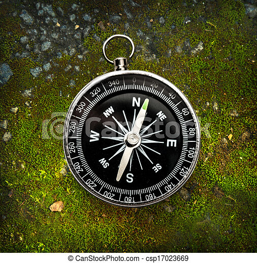 Compass on musgo - csp17023669