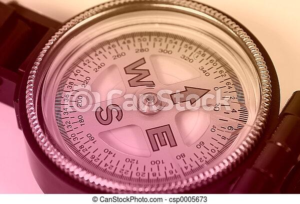 Compass Face - csp0005673
