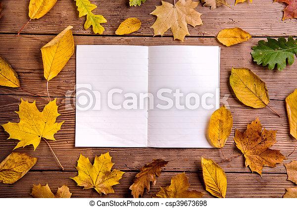 composition, feuille, bois, coup, dos, automne, studio, notebook. - csp39673698