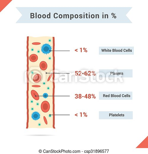 Composition of whole blood - csp31896577