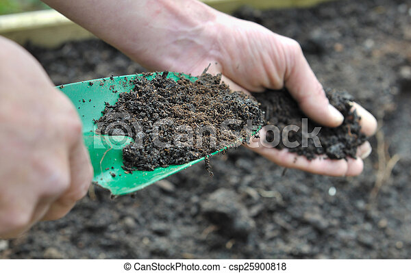 compost for garden  - csp25900818