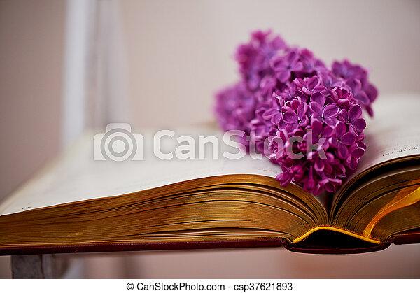 comprehensive, 本, ページ, ライラック - csp37621893