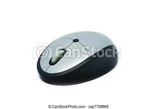 Computer mouse - csp7709868