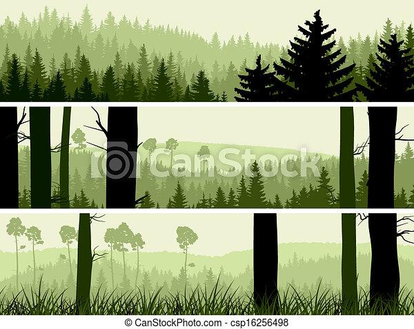 Banners de colinas coníferas de madera. - csp16256498
