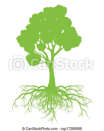 conceito, árvore, vetorial, ecologia, raizes, fundo, cartão - csp17289588