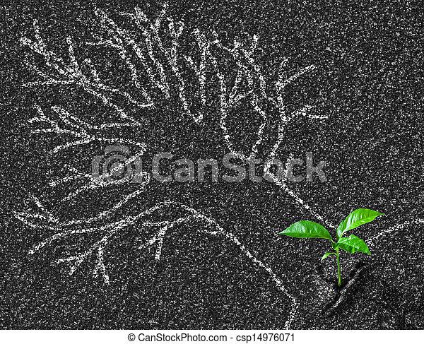 concept, asphalte, arbre, jeune, craie, croissance, contour, route - csp14976071