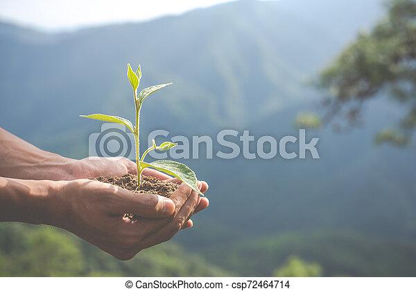 Concept of environmental conservation in the garden for children. - csp72464714