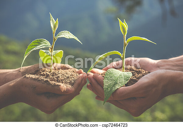 Concept of environmental conservation in the garden for children. - csp72464723