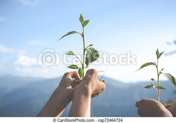 Concept of environmental conservation in the garden for children. - csp72464724
