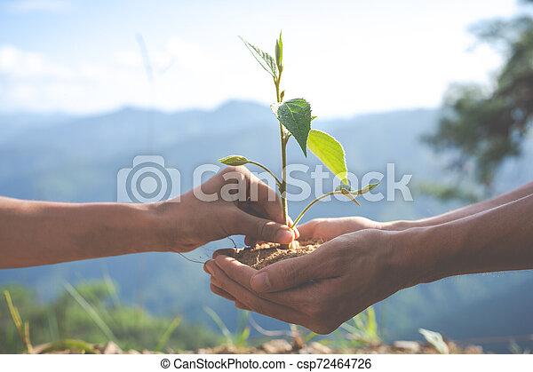 Concept of environmental conservation in the garden for children. - csp72464726