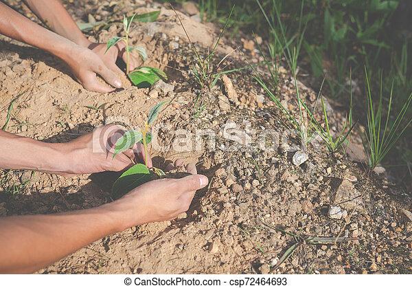 Concept of environmental conservation in the garden for children. - csp72464693