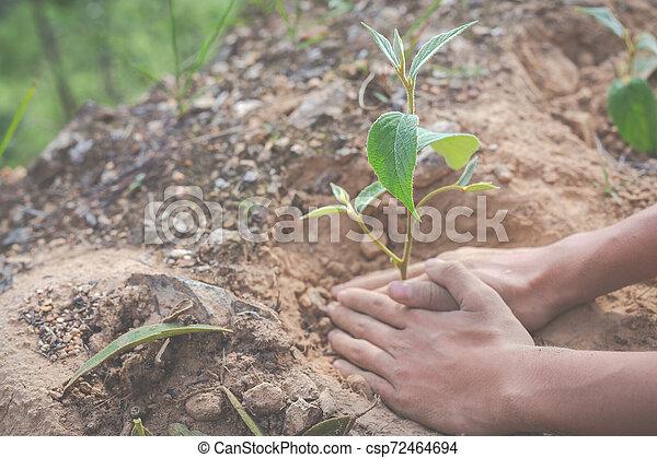 Concept of environmental conservation in the garden for children. - csp72464694