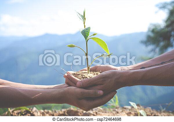 Concept of environmental conservation in the garden for children. - csp72464698