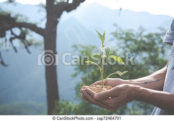Concept of environmental conservation in the garden for children. - csp72464701